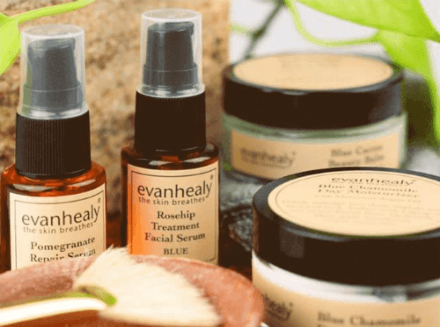 image of evanhealy products